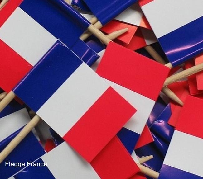 Frankreichs neuer Präsident Emmanuel Macron: EU-Retter in der Not?